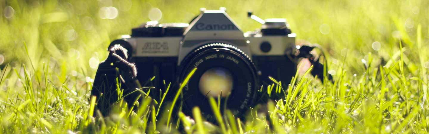 A Canon 35mm camera laying in the grass.